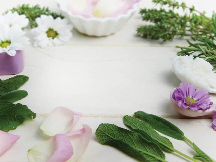Prírodné látky v starostlivosti o kožu